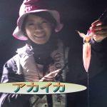 1紀北町引本浦のボートのアカイカ(2016年9月10日放送)