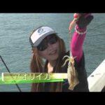 福井県小浜の船アオリイカ(2014年11月15日放送)