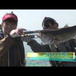 紀北町紀伊長島の釣り堀(2014年5月10日放送分)