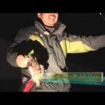 津市香良洲町のボートメバル(2014年5月3日放送分)