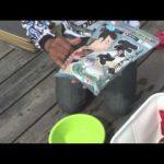 岐阜県海津市のヘラ(2014年6月21日放送分)