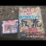 津市雲出 波止の紀州釣り(2014年7月19日放送分)