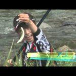 亀山市関町加太川のアユ(2014年8月16日放送)