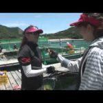 紀北町紀伊長島の釣堀大会(2014年8月2日放送分)