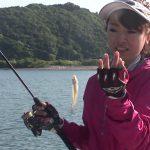 紀北町引本浦の船キス(2017年7月8日放送)