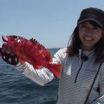紀北町引本浦のボートの根魚パート2(2017年8月5日放送)