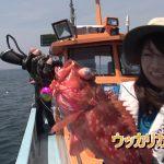 南伊勢町中津浜の船のタイラバ(2018年6月9日放送)