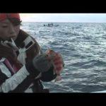 和歌山県勝浦のライト深海釣り前編(2017年1月31日放送)