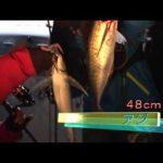 紀北町引本浦のボートアジング(2015年3月14日放送)
