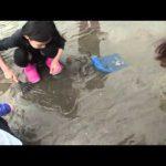 津市御殿場の潮干狩り(2015年4月25日放送)