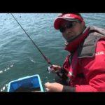 南伊勢町中津浜の筏チヌ(2015年5月2日放送)
