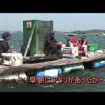 鳥羽市千賀の筏チヌ大会(2015年5月30日放送)
