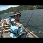 南伊勢町内瀬の筏のフカセ釣り(2015年6月27日放送)