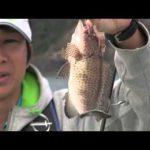 紀北町引本浦のボートのテンヤ(2015年11月7日放送)
