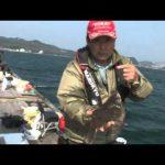 鳥羽市本浦の筏チヌ(2015年11月14日放送)