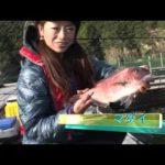 紀北町紀伊長島の釣堀大会(2015年11月28日放送)