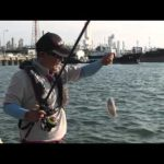 四日市霞の波止釣り(2015年12月5日放送)