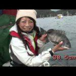 南伊勢町中津浜の筏チヌ(2016年1月9日放送)