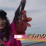 南伊勢町宿浦のボートフラッシュジギング(2016年8月13日放送)