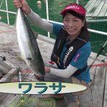 紀北町紀伊長島の釣堀(2016年8月20日放送)