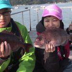 南伊勢町さざら浦の釣堀(2016年12月3日放送)