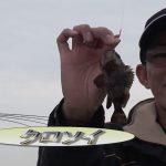 鈴鹿市白子港の波止釣り(2016年12月31日放送)