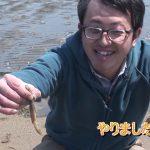 津市御殿場の潮干狩り(2017年4月29日放送)