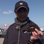 津市伊倉津の波止の根魚(2020年4月11日放送)