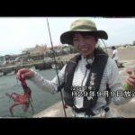 鈴鹿市鈴鹿沖の船タコパート1(2020年8月1日放送)