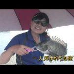志摩市磯部町的矢の筏チヌ(2020年9月5日放送)