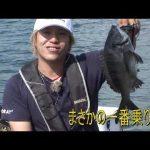 鳥羽市千賀の筏チヌ(2020年10月3日放送)